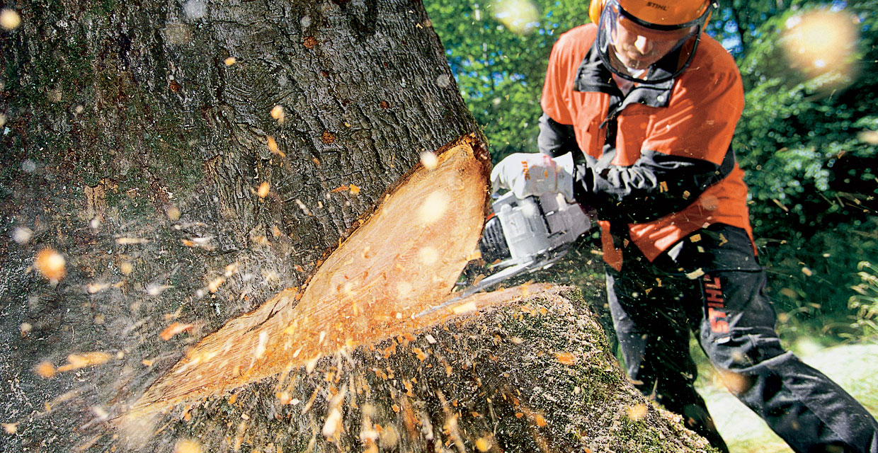 Top 10 Chainsaws Reviews — Best  Models Worth Buying