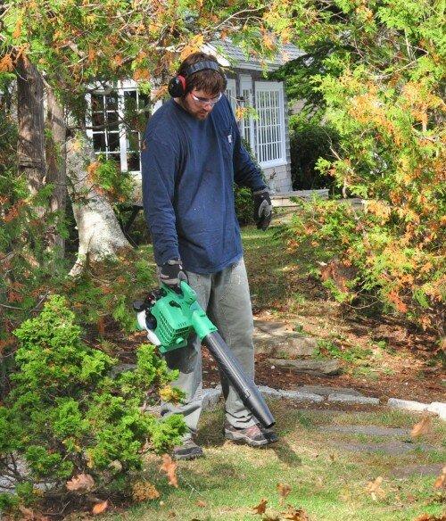 hitachi leaf blower (2)