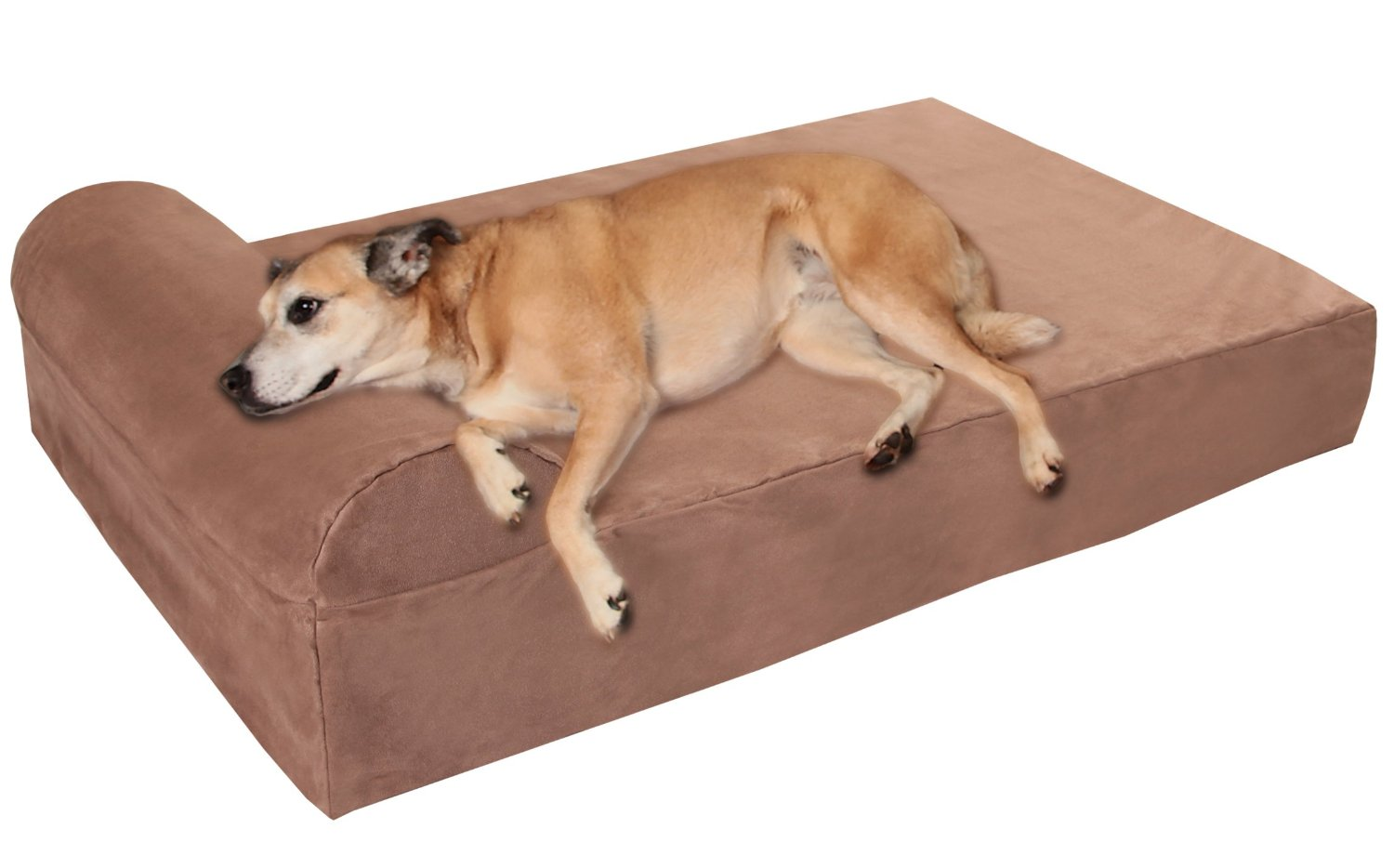Top 10 Best Orthopedic Dog Bed Reviews — Models Worth Buying