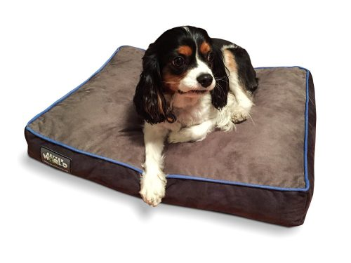 First-Quality 6 Thick Orthopedic Dog Bed Pure Premium Memory Foam Ideal for Aging Dogs Waterproof Helps Ease Pain of Arthritis & Hip Dysplasia 180 GSM Removable Washable Cover