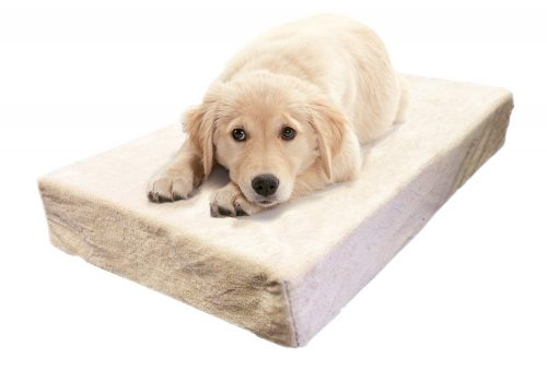 Milliard Premium Orthopedic Memory Foam Dog Bed and Anti-Microbial Waterproof Non-Slip Cover