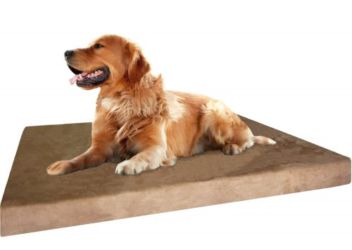 Premium Durable Orthopedic Memory Foam Dog Bed for Small Medium to Extra Large Pet with Washable External Cover and Waterproof Internal Liner + 2nd Bonus Replacement Case