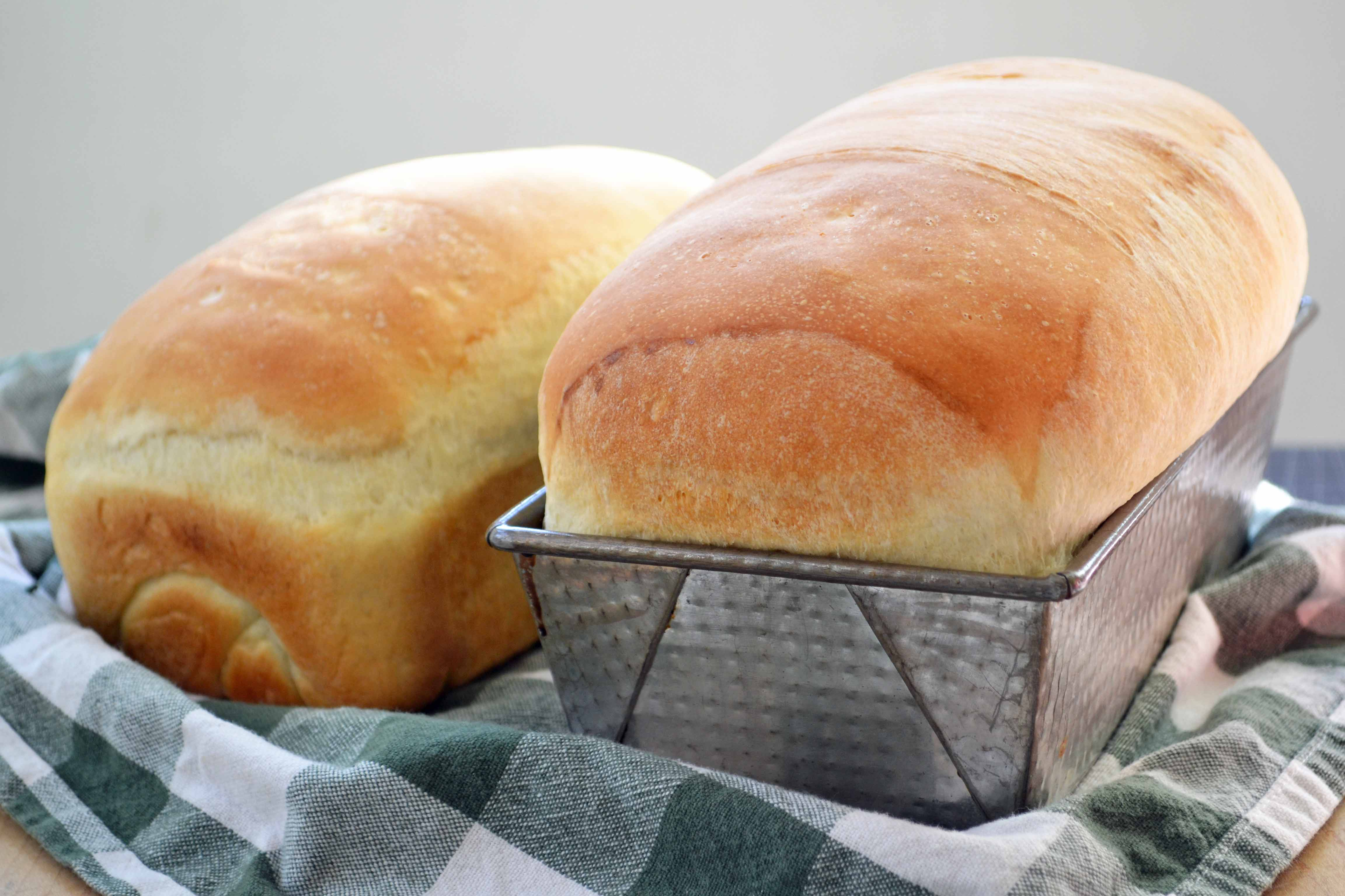 Top 10 Best Bread Machine Reviews Making The Right Choice