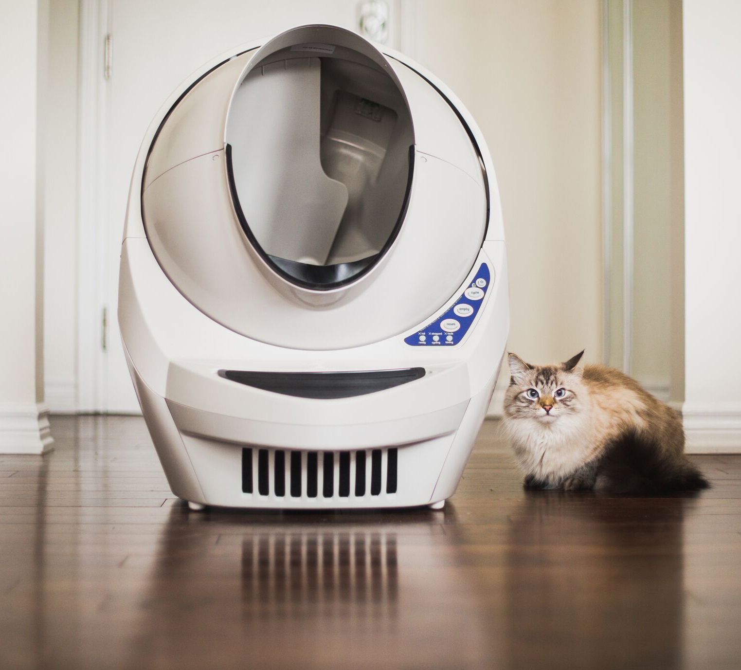top rated self cleaning litter box