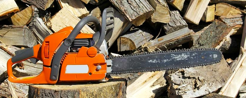 Top 10 Chainsaw Reviews — Best Models Worth Buying in 2020