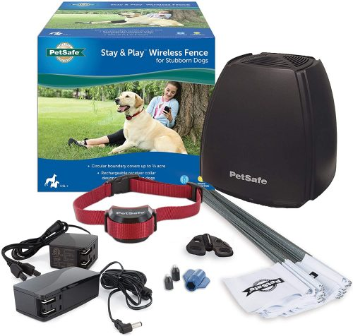 Best Wireless Fence for Dogs (Electric Collar) – Buying Guide & Reviews