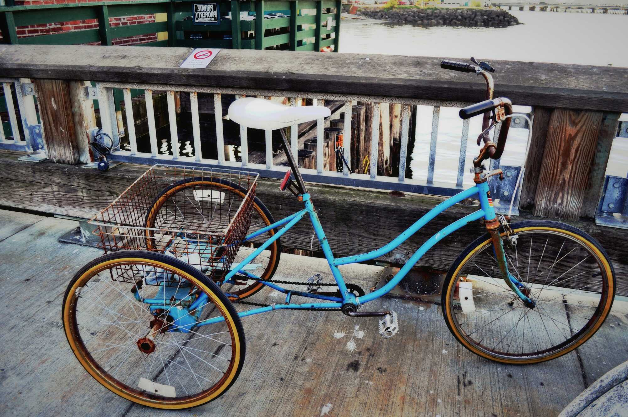 10 Stunning Adult Tricycle Reviews — Find Your Ideal One in 2020