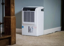 3 Best Basement Dehumidifiers of 2020