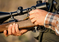 Top 10 Best Rifle Scopes Under 500 Reviews – Never Miss A Target in 2020