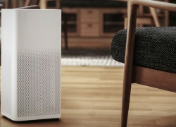 Top 5 Air Purifiers for Mold