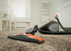 The Best Canister Vacuum Cleaners for 2020 | Tested and Reviewed