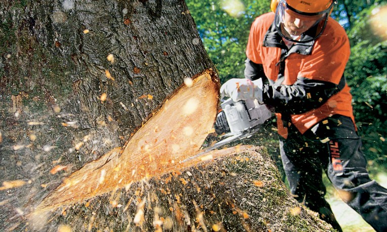 Top 10 Chainsaw Reviews — Best Models Worth Buying in 2018