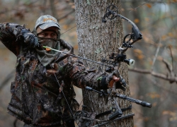 Top 3 Best Compound Bows for Hunting