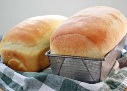 Top 10 Best Bread Machine Reviews — Making the Right Choice in 2020