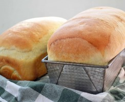 Top 10 Best Bread Machine Reviews — Making the Right Choice