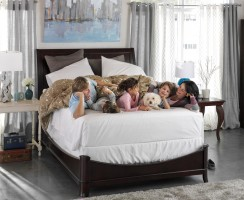 Top 10 Sealy Posturepedic Mattress Reviews — Your Best Choice in 2018