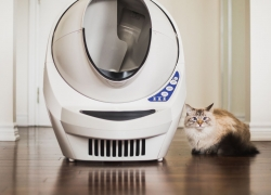 Top 10 Smart Self Cleaning Litter Box Reviews — An Unbiased Research (2019)