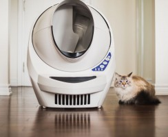 Top 10 Best Self Cleaning Litter Box Reviews — An Unbiased Research